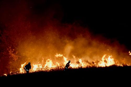 Australia bushfire  library image courtesy Shutterstock / Mari_May